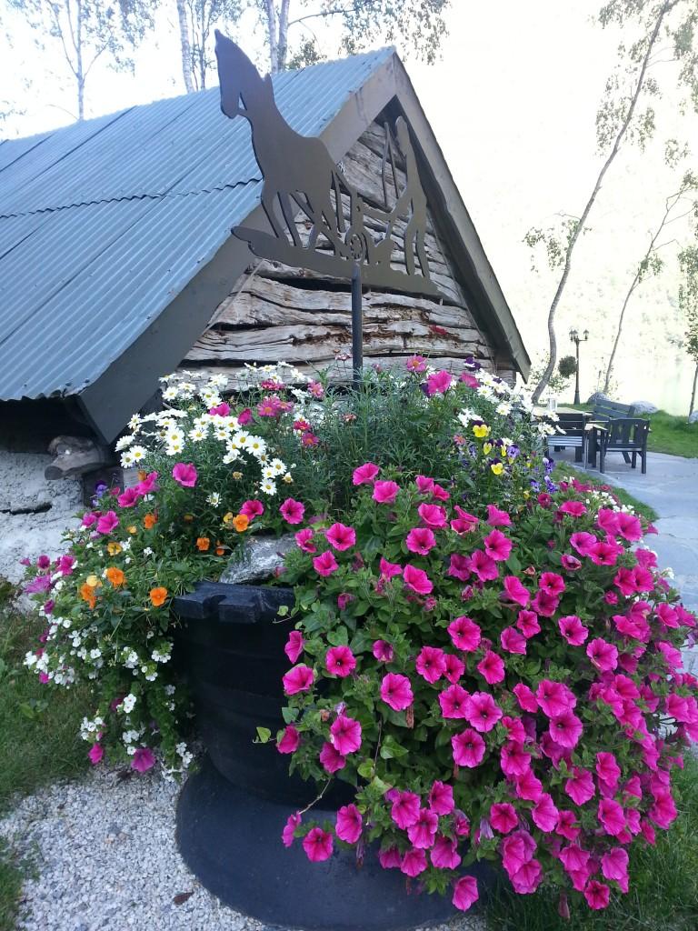Ei av blomster urnene på Yrineset.