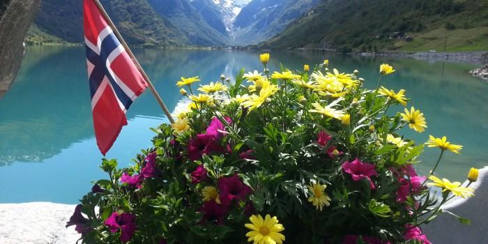 Blomster på Yrineset.